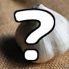 ひげにんにくは愛媛のにおいが残りにくいニンニク?『発見!なるほどレストラン』4/21の餃子