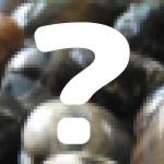ホッキ貝!『満天青空レストラン』4/11は北海道の北寄貝、そのレシピとお取り寄せ