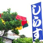 湘南しらす『ごはんジャパン』5/23@神奈川の通販お取り寄せ