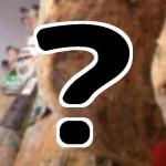 チンタ・セネーゼ?『世界ふしぎ発見』6/13 幻の豚の通販お取り寄せは?
