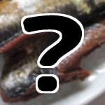 『ケンミンショー』6/11 山形新庄春のカド焼きまつりはニシン丸焼き?