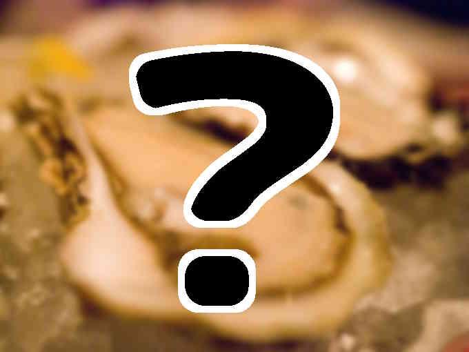 発見なるほどレストラン_牡蠣_テレビで話題