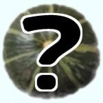 くりりん・黄金のカボチャ@みよい農園=幻のカボチャの通販お取り寄せ 鉄腕ダッシュ・DASH村@北海道森町