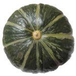 完熟かぼちゃ 青空レストラン=通販お取り寄せ可!神奈川・三浦・伊藤農園 みやこ南瓜