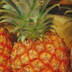 ジョブチューン 塩パインパイナップルの通販お取り寄せは?依田啓示&英恵 カナンファーム アイス